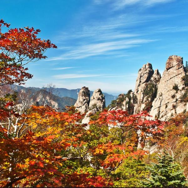 Seoraksan-fall-leaves-Mt-Seorak-autumn-leaves-view