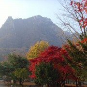 Seoraksan-fall-leavesmtseorak-background