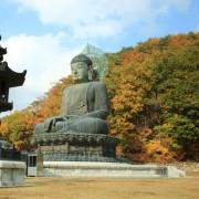 Sinheungsa-Temple-great-Bronze-autumn-buddha-fall-leaves