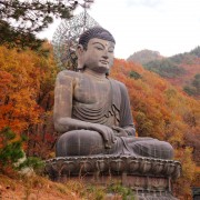 Sinheungsa-Temple-great-Bronze-autumn-buddha-fall-leaves-background