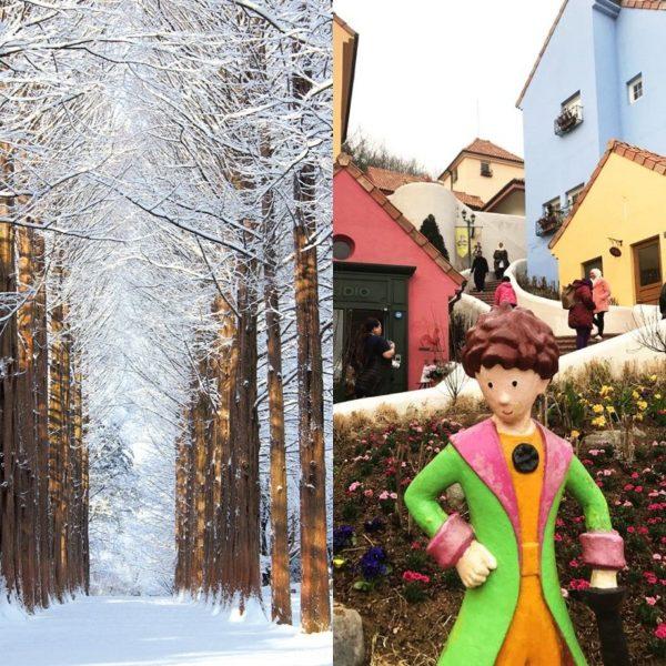 nami-island-petite-france-winter