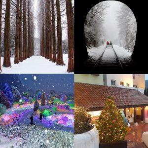 nami-island-ganchon-rail-park-garden-of-morning-calm-petite-france-winter