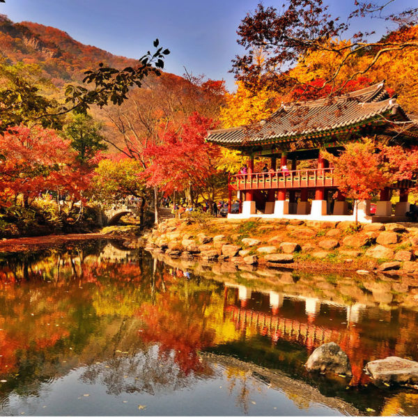 baekyangsa-temple-naejangsan-national-park-fall-foliage
