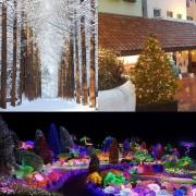 nami-island-petite-france-garden-of-morning-calm-winter