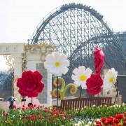 everland-tulip-garden