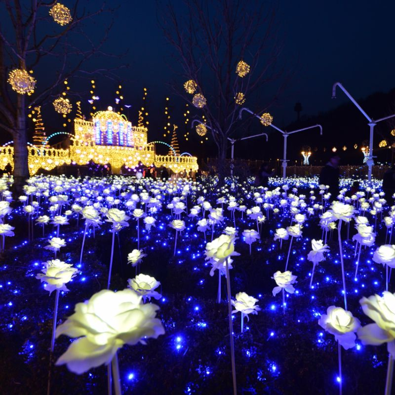 UP TO 23%, Everland Full day with Nightlight festival discount shuttle bus tour package | KoreaTravelEasy
