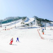 ski-tour-package-korea-family-elysian-private