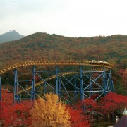 seoul_land_seoulland_themepark_autumn_rollercoaster_mapleleaf_red_leaves