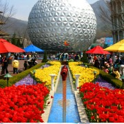 seoul_land_seoulland_themepark_flowers_attraction_flowers