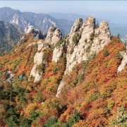 Seoul-group-tour-join-in-tour-all-year-fall-seorak-seoraksan-red-leaves