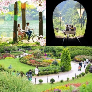 nami-island-ganchon-rail-park-garden-of-morning-calm-sparing