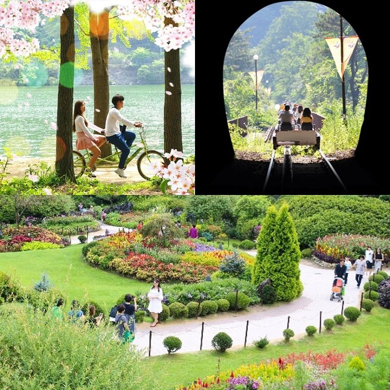 UP TO 14%, Nami Island, Gangchon Railbike and The Garden of Morning Calm 1 day tour | KoreaTravelEasy