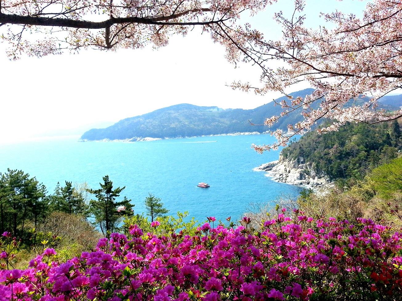 Geoje Islands-spring