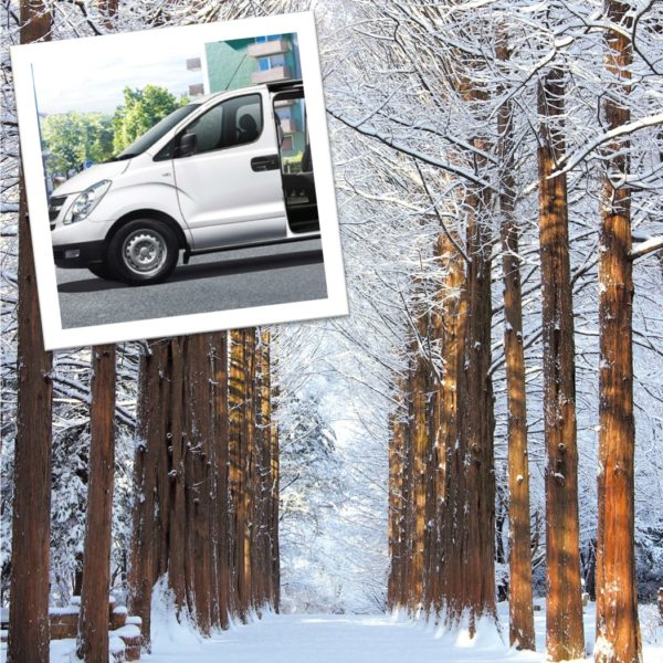 1-day Private car and driver to Nami island area and around Seoul-winter