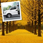 1-day Private car and driver to Nami island area and around Seoul