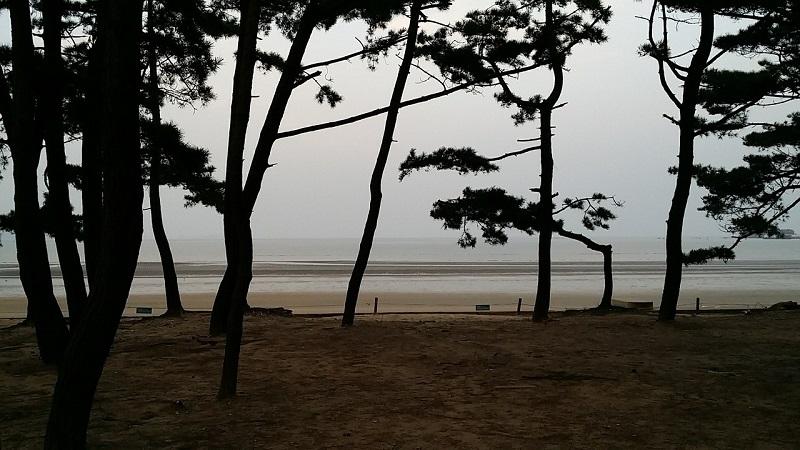 taean-Mongsanpo-Beach