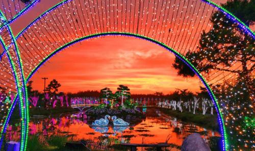 Taean -light-festival