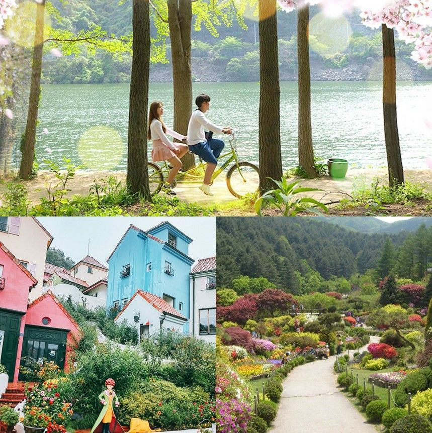UP TO 19%, Nami Island, Petite France and Garden of Morning Calm 1-day shuttle package tour | KoreaTravelEasy