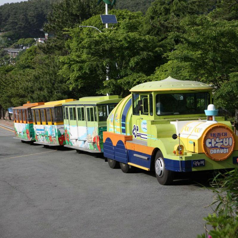 Taejongdae, Gamcheon Culture Village, Songdo Skywalk, Busan City Tour, Busan, Haedong Yonggungsa Temple, Busan day tour