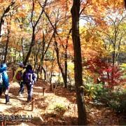 Korea-Fall-Foliage-Random-tour-Seoul-Gyeonggi-Bughansan