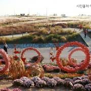 Korea-Fall-Foliage-Random-tour-Seoul-Gyeonggi-haneul-park