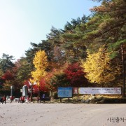 Korea-Fall-Foliage-Random-tour-Seoul-Gyeonggi-Yangpyeong