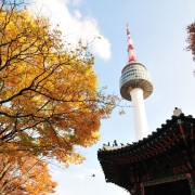 koreatraveleasy-fall-autumn-foliage-random-day-tour-around-seoul