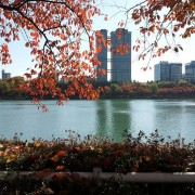 seokchon-lake-fall-autumn