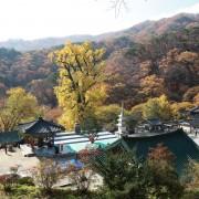 Yongmunsa-Temple-in-Yangpyeong