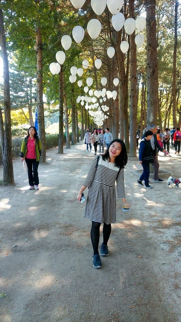 nami island fall tree 4