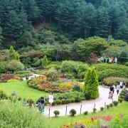 Garden of morning_calm