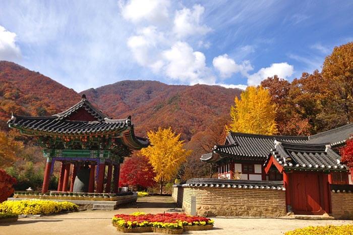 Jirisan_Mountain