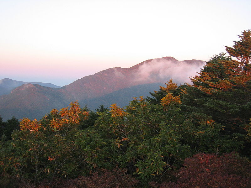 UP TO 8%, Korea Autumn Fall Foliage 1-Day Tour To Jirisan Mountain From Busan (Oct 25 - Nov 8) | KoreaTravelEasy