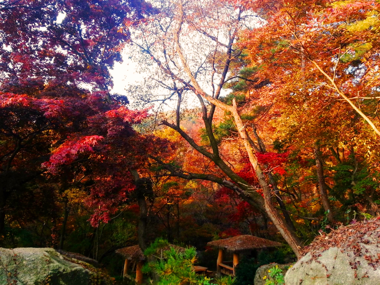 Hasil gambar untuk Mt. Bukhansan autumn