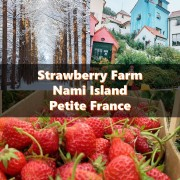 strawberry farm nami island petite france title