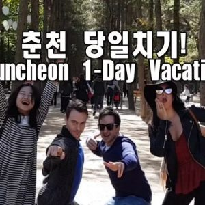 michin-alex-chuncheon-one-day-private-van