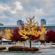 Seoul Worldcup Park