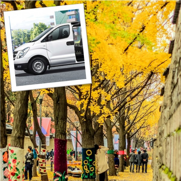 Best Fall Foliage Season 1-Day Private Car And Driver Tour In Seoul