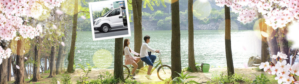 1day Private car and driver to Nami island area and around Seoul (Tourguide option) | KoreaTravelEasy
