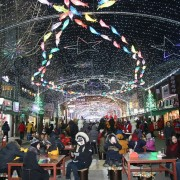 sancheoneo-festival-winter-lights