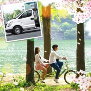 1-day-Private-car-and-driver-to-Nami-island-area-and-around-Seoul-spring
