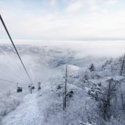 korea-ski-resort-korea-ski-korea-ski-tour-korea-ski-lesson-yongpyong-ski-resort-korea-winter-korea-snow-seoul-snow-pyeongchang-skiing