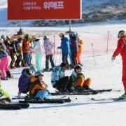 korea-ski-yongpyong-resort-ski-lesson-ski-class