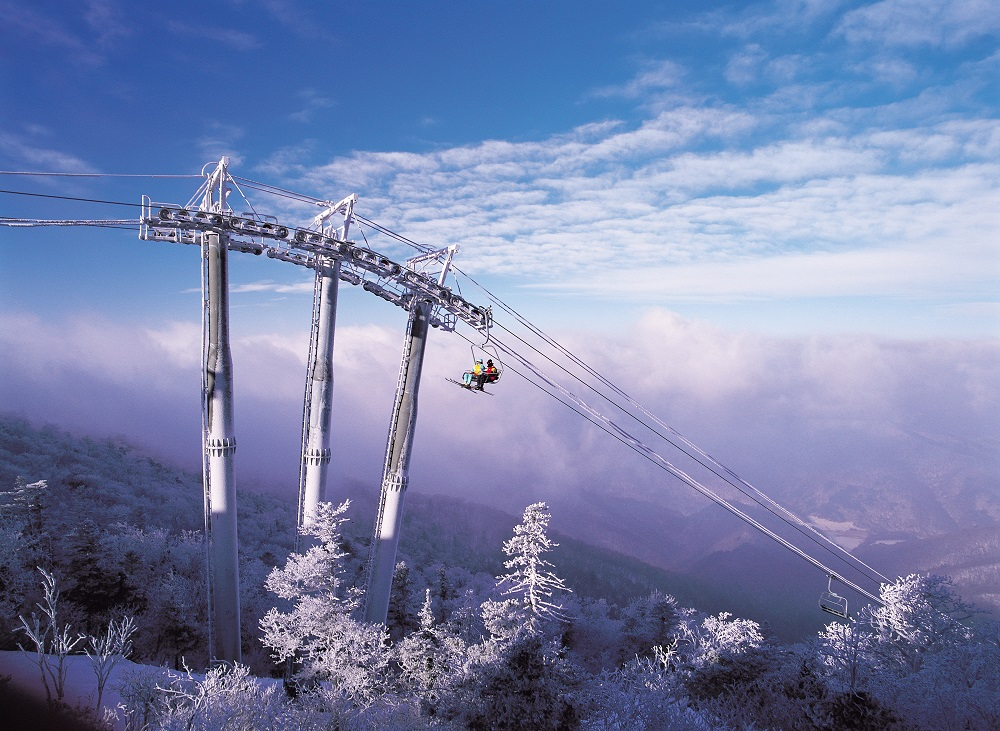 Yongpyong Resort 2Day 1Night Ski Bus Tour Package with Accomodation (~until Jan 20) | KoreaTravelEasy