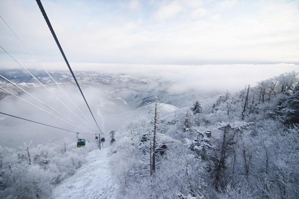 Yongpyong Resort Winter Wonderland
