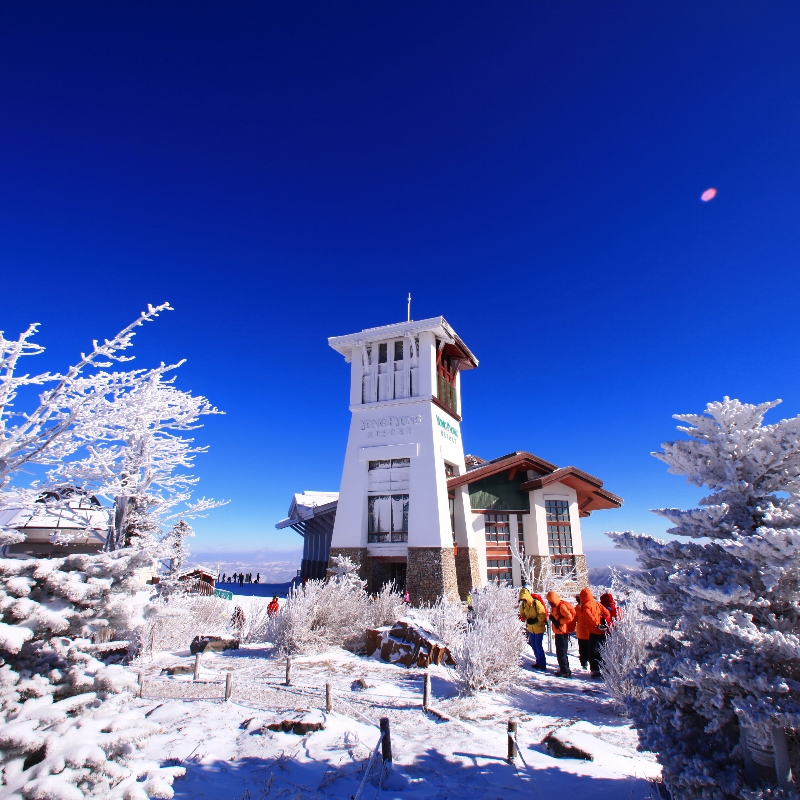 Yongpyong-Ski-resort-shuttle-bus