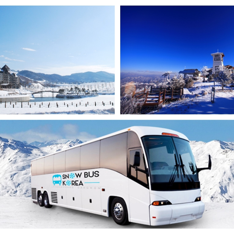 Seoul to Alpensia/YongPyong Ski Resort Shuttle Bus Ticket | KoreaTravelEasy