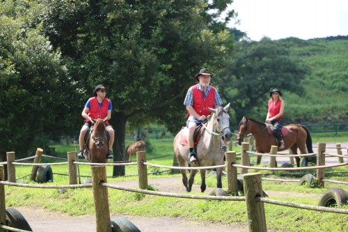 jeju-island-horseback-riding-for-beginners
