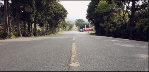 jeju-island-mysterious-road