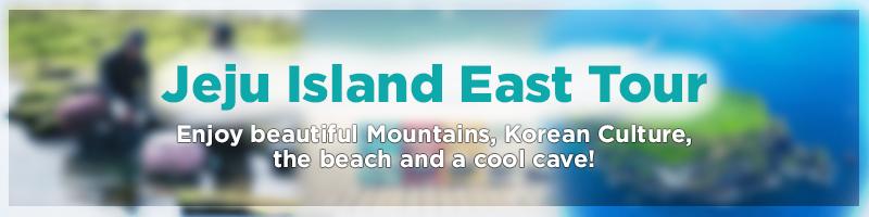 enjoy-jeju-island-east-tour-private-car